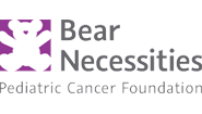 Bear Necessities Pediatric Cancer Foundation in Chicago