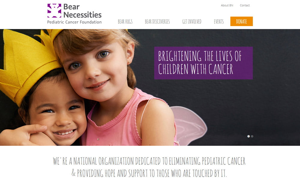 Bear Necessities Pediatric Cancer Foundation Website