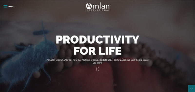 amlan international website