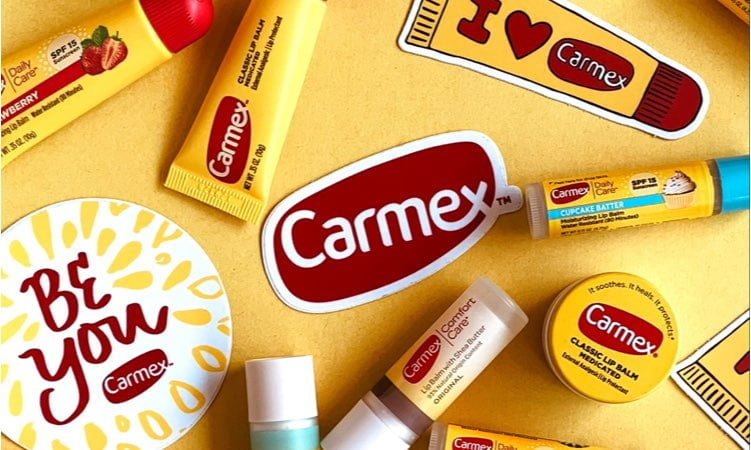 Carmex Web Design Support Plan